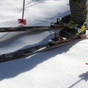 Maple Leaf Shaped Ski Pole Baskets