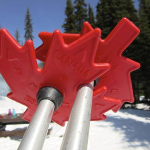 Ski Pole Replacement Baskets